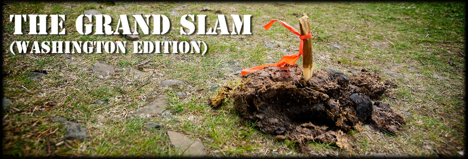 Washington Grand Slam